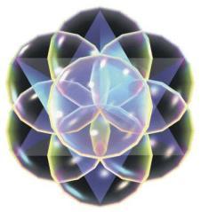 sacred flower Nassim H